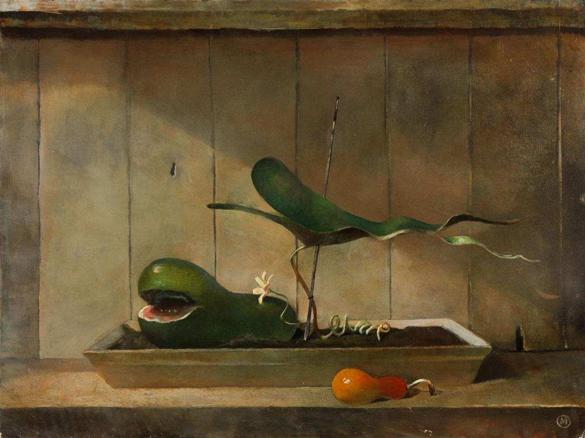 Julian Gordon Mitchell - Contemporary Oil, Vegetable Patch