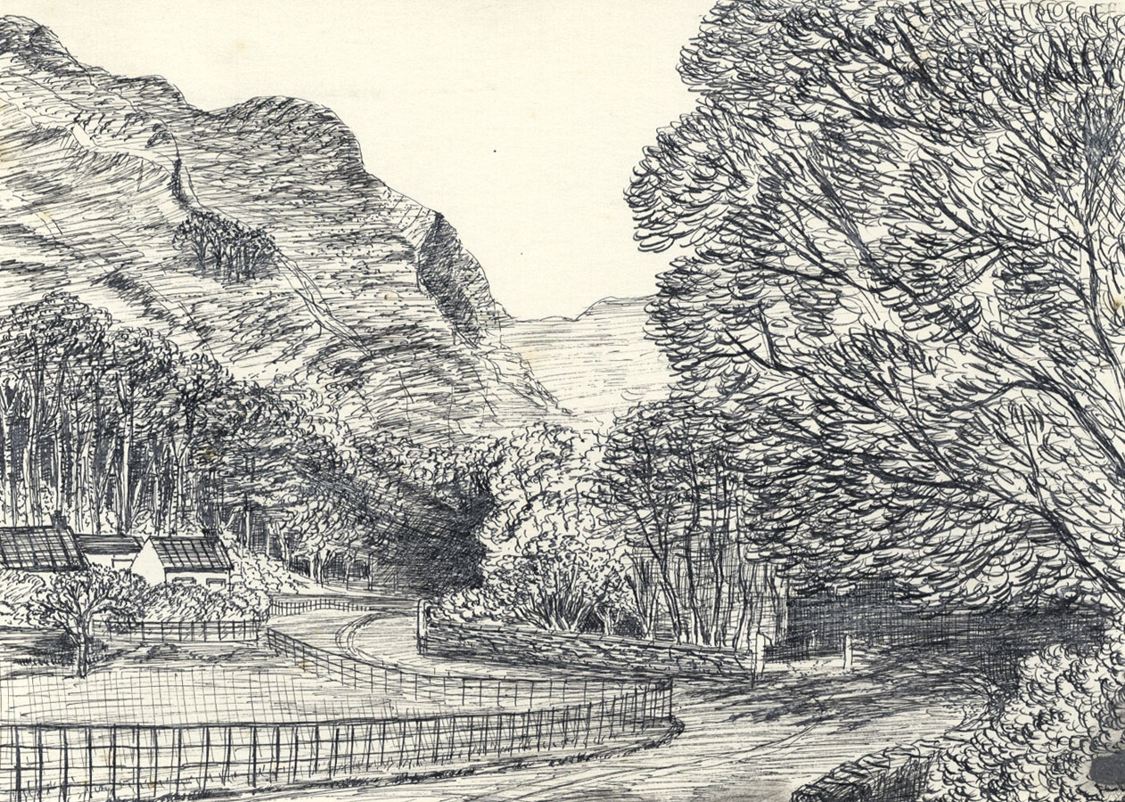 Elizabeth Painter - Contemporary Pen and Ink Drawing, Country Road
