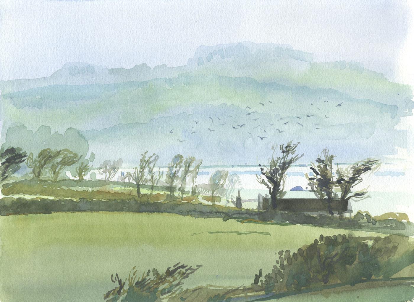 Robert T. Blayney (1929-2016) - Mid 20th Century Watercolour, Green Fields