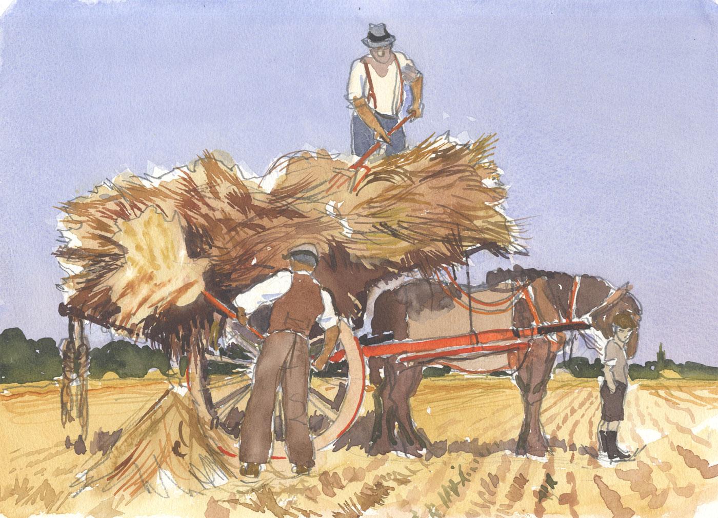 Robert T. Blayney (1929-2016) - Mid 20th Century Watercolour, Hay and Horse