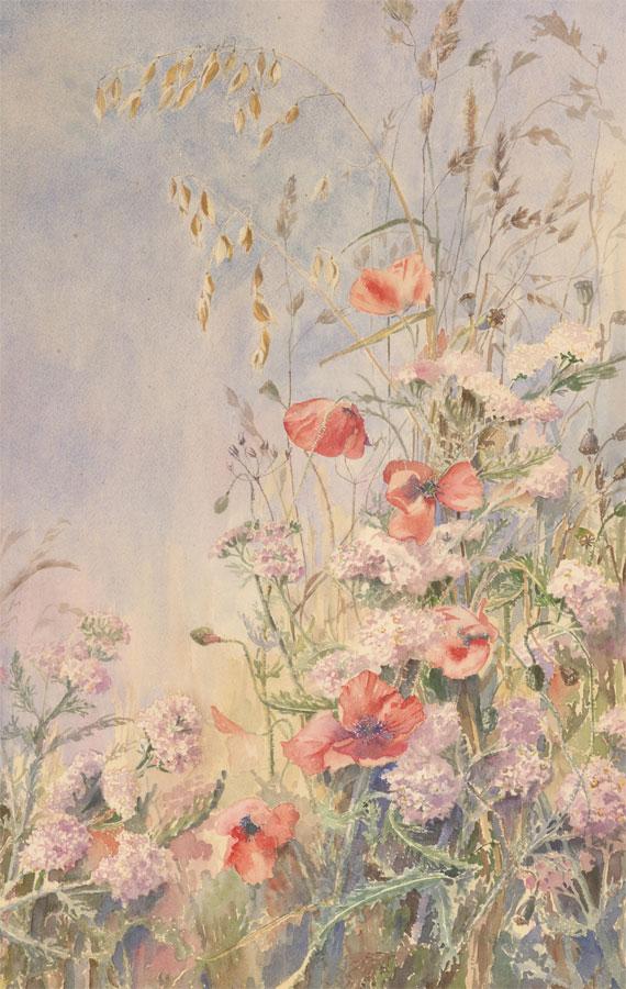 Barbara Hirst - 1980 Watercolour, Poppies, Yarrow and Grasses