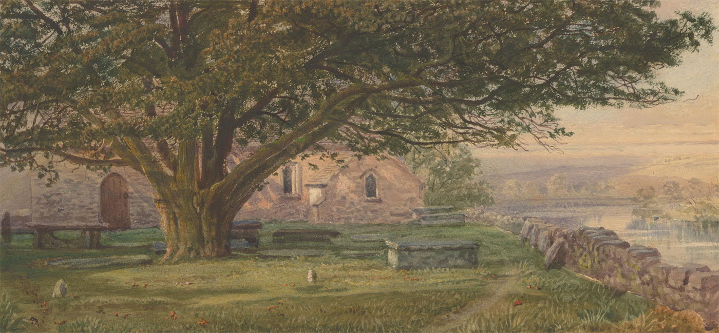 Early 20th Century Watercolour - Landscape View with Large Tree