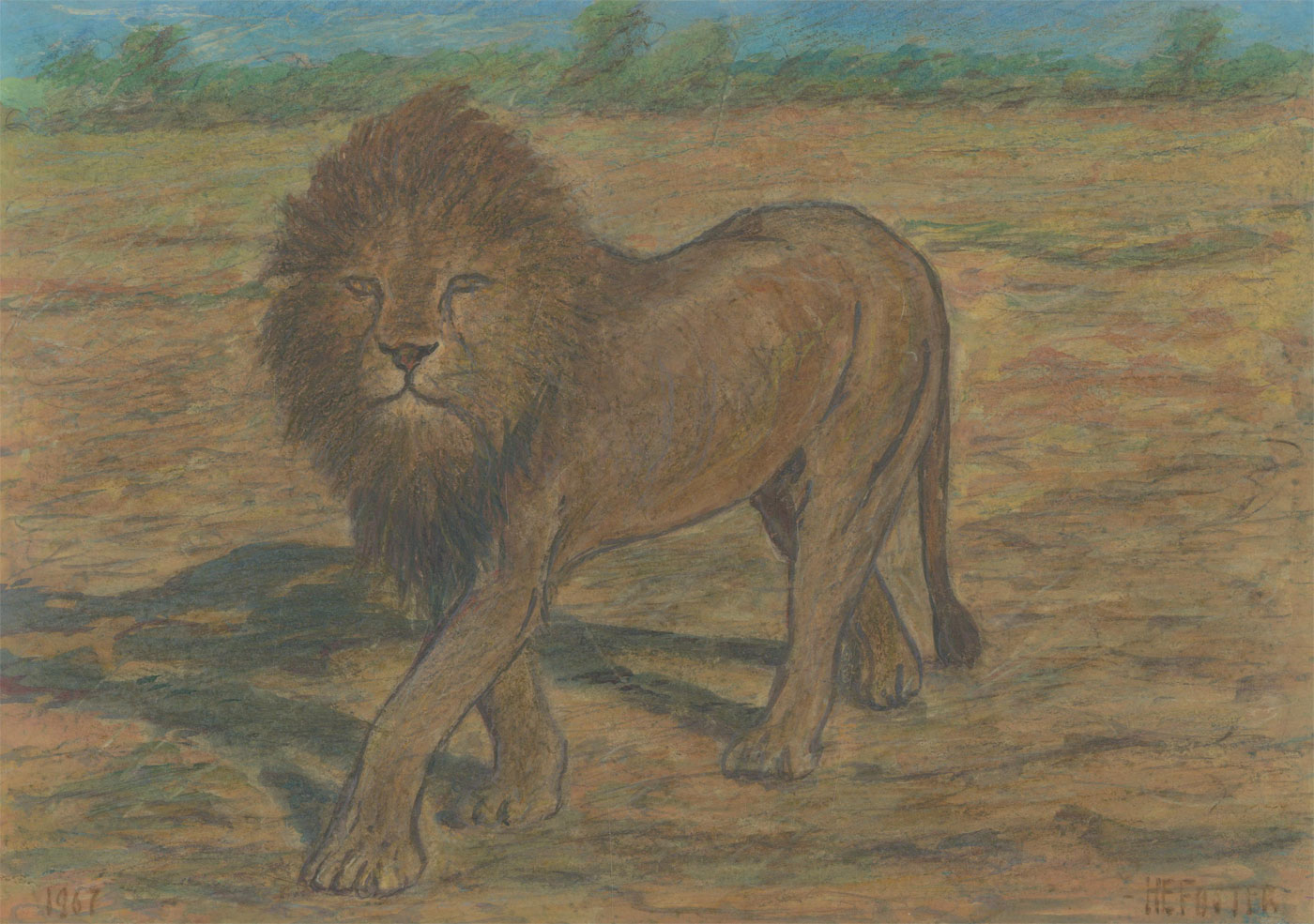 Henry E. Foster (1921-2010) - 1967 Watercolour, Study of a Lion