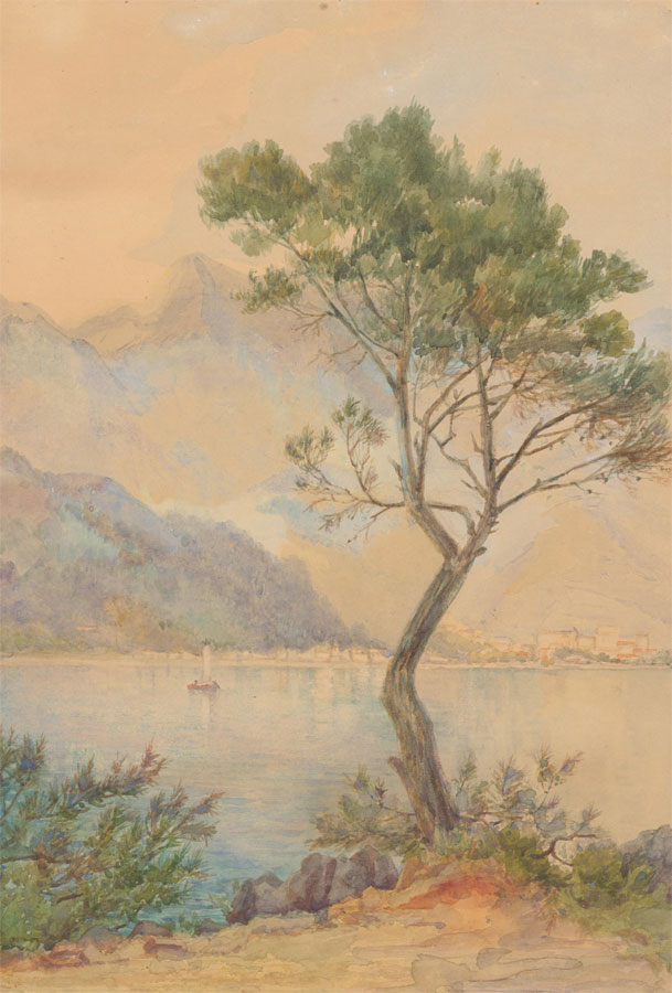 Early 20th Century Watercolour - Mountainous Landscape View with Tree
