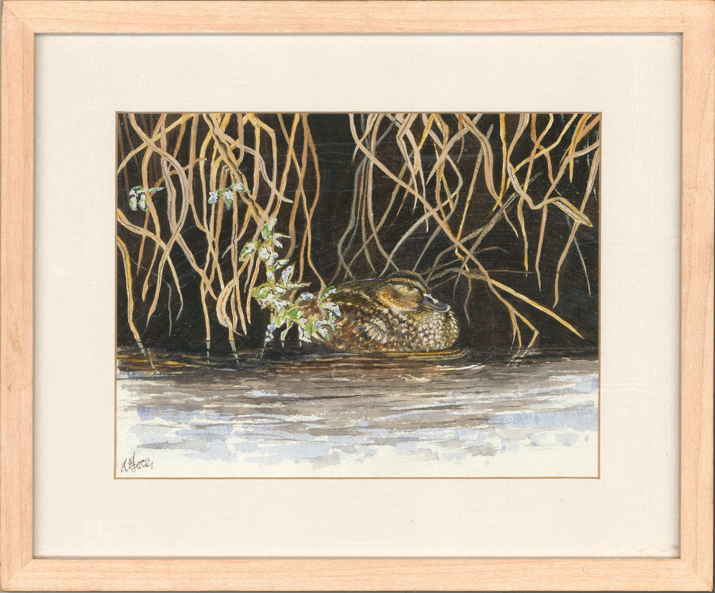 Framed Contemporary Watercolour - Resting Duck