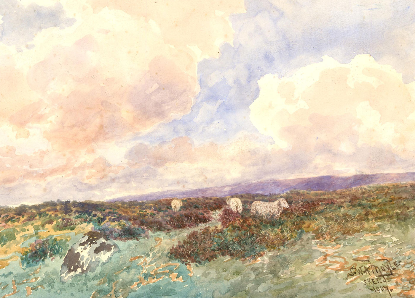 S.W.A. Moyle - Signed 1907 Watercolour, Sheep on the Moors
