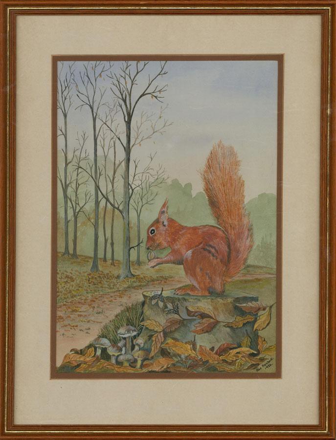 Rae Haslock - 1984 Watercolour, Red Squirrel
