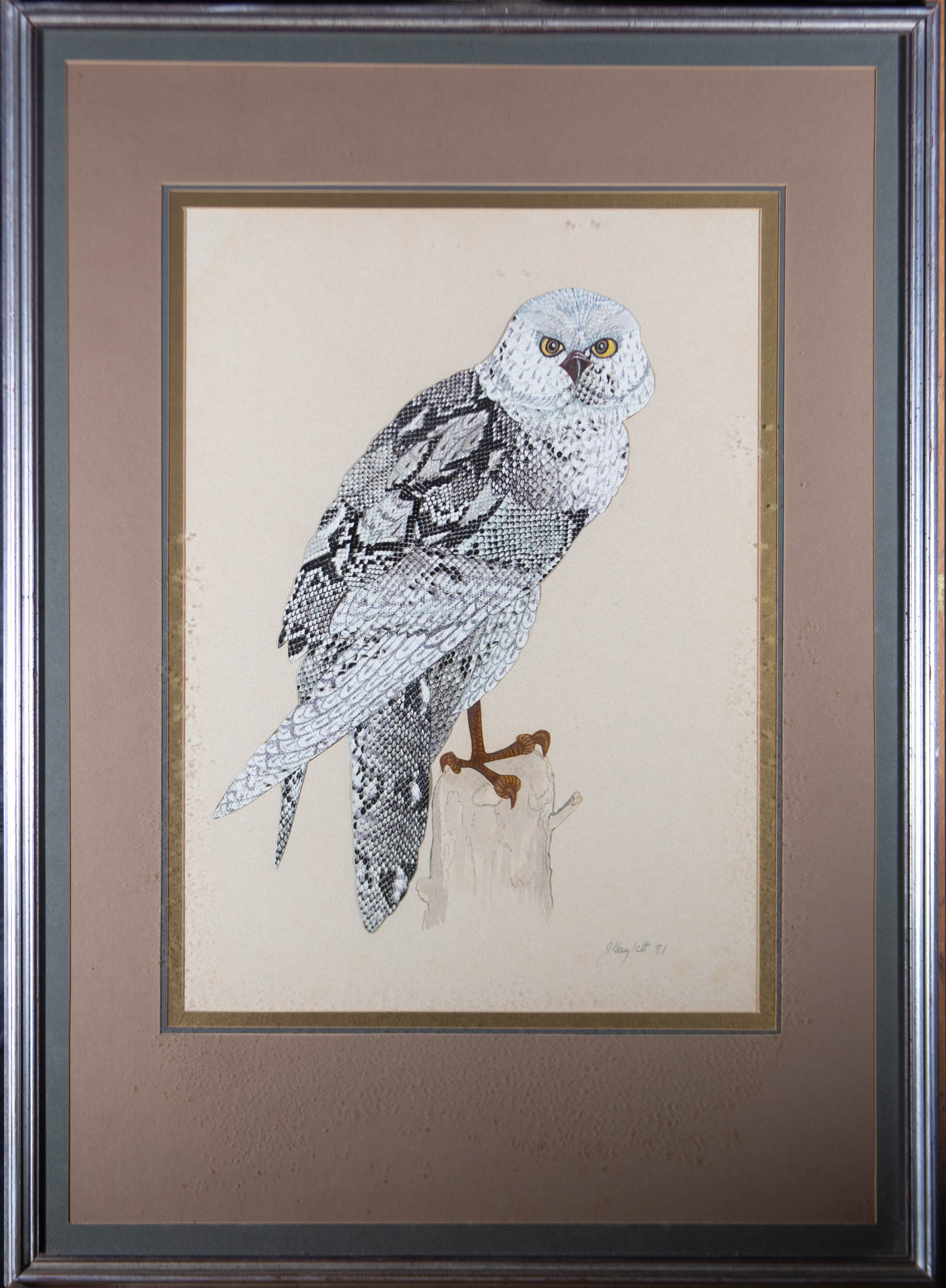 Jean Haylett (1924-2018) - Large 1981 Mixed Media Collage, Owl