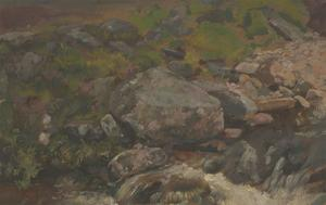 Alfred William Strutt - Early 20th Century Oil, Study of Moorland Rocks