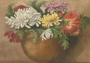 P.W.N.G. - Signed Late 19th Century Watercolour, Chrysanthemums