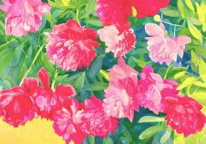 John Ivor Stewart PPPS (1936-2018) - Contemporary Watercolour, Pink Flowers