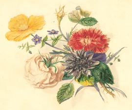 Mid 20th Century Watercolour - Floral Composition